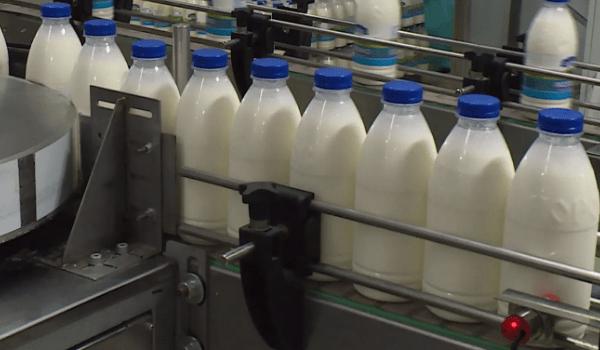 Очистка сточных вод молочного завода